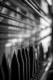 Rays of Light, Weaving Through Cotton Fibres Photographic Print by Gary Turner