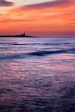 Coquet Island Photographic Print by Mark Sunderland