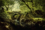 Romantic English Landscape Photographic Print by Mark Gemmell
