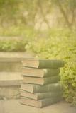 Antique Books in a Garden Photographic Print by Elizabeth Urqhurt
