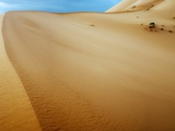 Sand Dunes in the Desert Photographic Print by Steven Boone