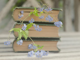 Forget Me Not Bookmarks Photographic Print by Elizabeth Urqhurt