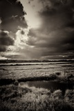 Blakeney Marshes on the Norfolk Coastline Photographic Print by Tim Kahane