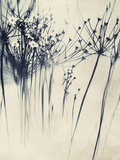 Close Up of Flowers Kunst på metall av Mia Friedrich