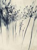 Close Up of Flowers Alu-Dibond von Mia Friedrich
