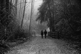 Two Figures Walking in Distance in Woodland Photographic Print by Sharon Wish
