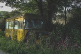 Old Bus in Woodland Photographic Print by Clive Nolan
