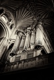 Norwich Cathedral Organ Photographic Print by Tim Kahane