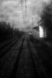 Train Track Photographic Print by Bernardo Bonnefon