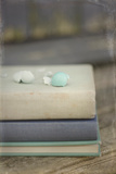 Boken Robin's Egg on Vintage Books Photographic Print by Elizabeth Urqhurt