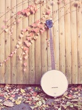 Banjo Against Fence Photographic Print by Jillian Melnyk