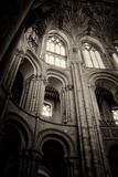 Norwich Cathedral Interior Photographic Print by Tim Kahane