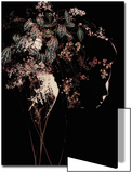 Young Womans Face in Silhouette Profile with Floral Montage Posters by Leslie O'Dell Ann