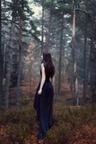Young Woman Wearing Black Dress in Woods Photographic Print by Josefine Jonsson