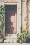 French Doorway in Summer Photographic Print by Laura Evans