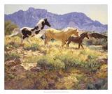 Horses at Big Wash Prints by Claire Goldrick