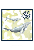 Whale Composition I Reprodukcje autor Megan Meagher