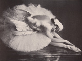 Anna Pavlova in 'The Swan' Metal Print