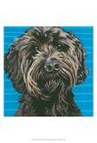 Dlynn's Dogs - Mini Posters by Dlynn Roll