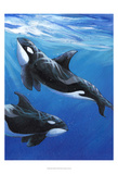 Under Sea Whales II Posters by Tim