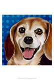 Dlynn's Dogs - Zach Print by Dlynn Roll