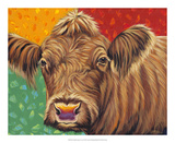 Colorful Country Cows II Poster by Carolee Vitaletti