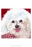 Dlynn's Dogs - Marie Art by Dlynn Roll