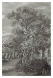 Classical Landscape Triptych III Giclee Print by Naomi McCavitt