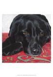 Dlynn's Dogs - Tallulah Poster by Dlynn Roll