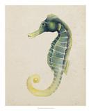 Sea Dweller V Posters by Grace Popp