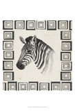 Safari Zebra II Prints by Grace Popp