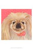 Dlynn's Dogs - Pinky Poster by Dlynn Roll