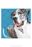 Dlynn's Dogs - Apollo Prints by Dlynn Roll