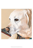 Dlynn's Dogs - Shell Prints by Dlynn Roll