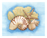 Seashells & Seafan I Posters by Wendy Russell