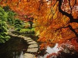 Autumn Colors in Butchart Gardens, Victoria, Vancouver Island, British Columbia, Canada Metal Print by  Barrett & Mackay