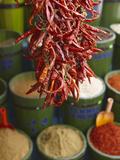 Chillies in Spice Market, Istanbul, Turkey, Europe Reproduction sur métal par Sakis Papadopoulos