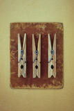 Three Clothes Pegs Photographic Print by Den Reader