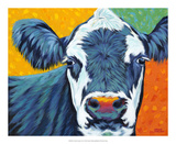 Colorful Country Cows I Prints by Carolee Vitaletti