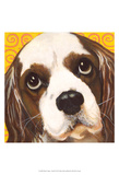 Dlynn's Dogs - Charlie Prints by Dlynn Roll