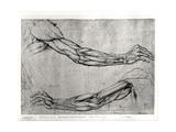 Étude de bras Reproduction sur métal par  Leonardo da Vinci