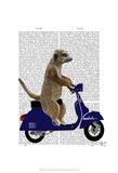 Meerkat on Dark Blue Moped Print by  Fab Funky