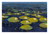 Lily Pads I Giclee Print by Tim