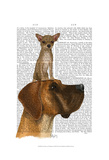 Great Dane and Chihuahua Posters by  Fab Funky