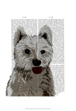 West Highland Terrier Plain Prints by  Fab Funky