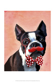 Boston Terrier Portrait with Red Bow Tie and Moustache Prints by  Fab Funky