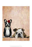 French Bulldog and English Bulldog Prints by  Fab Funky