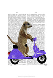 Meerkat on Lilac Moped Prints by  Fab Funky