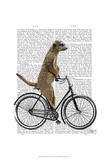 Meerkat on Bicycle Posters by  Fab Funky
