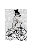 Dalmatian on Bicycle Posters by  Fab Funky